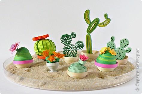 Квиллинг: Коллекция кактусов фото 3