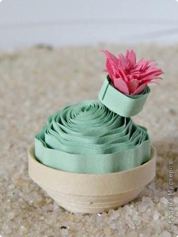 Квиллинг: Коллекция кактусов фото 8