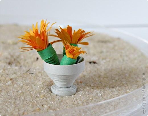 Квиллинг: Коллекция кактусов фото 14