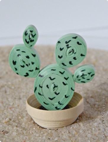 Квиллинг: Коллекция кактусов фото 12