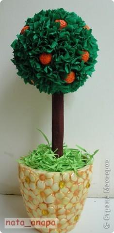 Вот и я вырастила апельсиновое деревце. Апельсины из солёного теста.  Спасибо STRENFLEX https://stranamasterov.ru/user/25077 за МК! фото 2