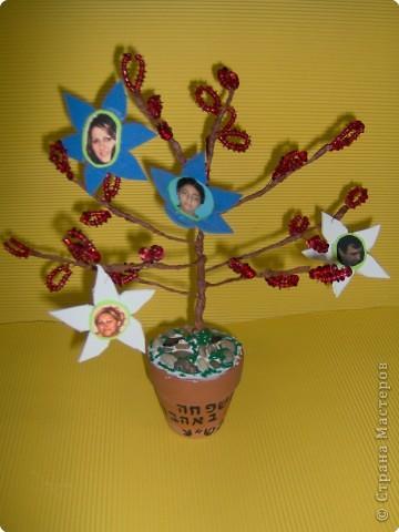 Моя семья.Генеалогическое древо . фото 2