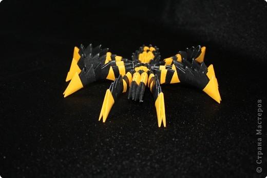 Оригами модульное: Паук фото 3