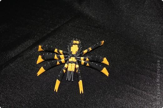 Оригами модульное: Паук фото 1