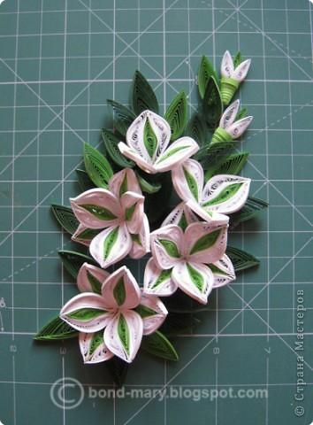 Всем привет! :) Сегодня я к вам с работой по квиллингу. Сделала эту работу как подарок к юбилею папы, он у нас любит лилии. фото 12