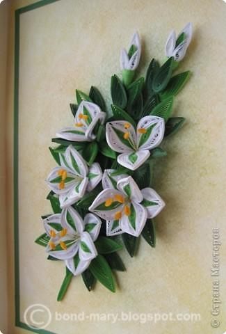 Всем привет! :) Сегодня я к вам с работой по квиллингу. Сделала эту работу как подарок к юбилею папы, он у нас любит лилии. фото 2