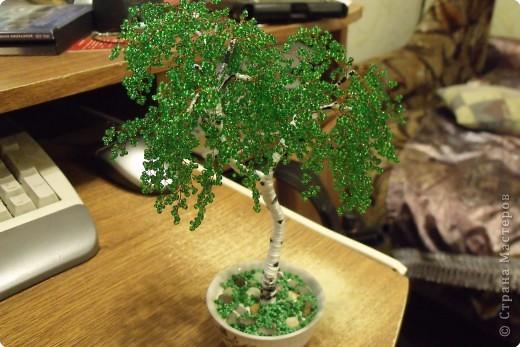 Бисероплетение: деревья из бисера