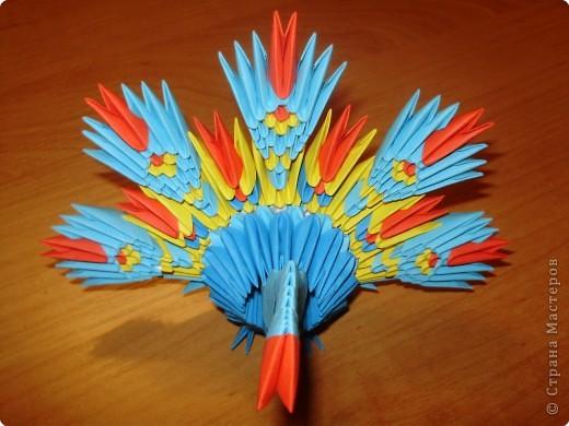 Оригами модульное: Павлинчик. фото 2