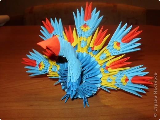 Оригами модульное: Павлинчик. фото 1