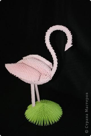 Розовый фламинго Бумага