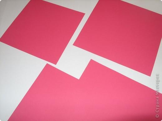 В последнее время заболела бумажными цветами. Вот такие пионы получились, легко делаются. фото 3