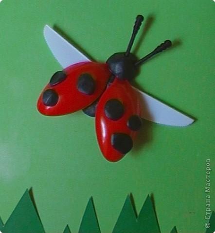 """Работа Елены Базаровой """"Подснежники"""" ( http://stranamasterov.ru/node/54446 ) натолкнула меня на идеи творения из пластиковой одноразовой посуды. Вот что у нас с сыночком получилось. Эту картинку мы назвали """"Божья коровка, лети на небо..."""" Очень хотелось сделать летящего жучка.   фото 2"""