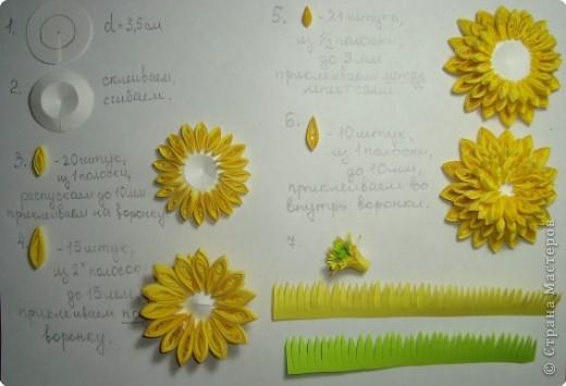 """Долго я думала как собрать цветы в форме шара.Думала я думала и наконец придумала! Но об этом чуть ниже.Решила я опробовать своё """" изобретение"""" на цветке золотой шар, научное название РУДБЕКИЯ. фото 5"""