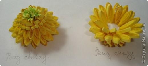 """Долго я думала как собрать цветы в форме шара.Думала я думала и наконец придумала! Но об этом чуть ниже.Решила я опробовать своё """" изобретение"""" на цветке золотой шар, научное название РУДБЕКИЯ. фото 7"""