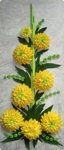 """Долго я думала как собрать цветы в форме шара.Думала я думала и наконец придумала! Но об этом чуть ниже.Решила я опробовать своё """" изобретение"""" на цветке золотой шар, научное название РУДБЕКИЯ. фото 4"""