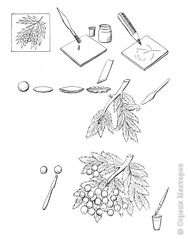 Мастер-класс Лепка Этапы работы Рябина Тесто соленое фото 15