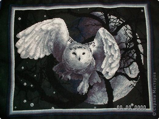 Белая сова. Интерьер Вышивка