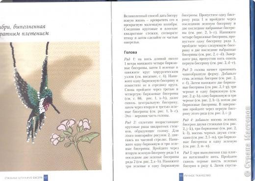 Схема колибри Бисер фото 1
