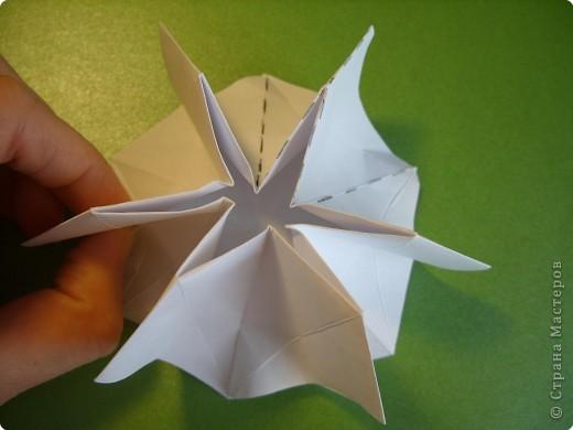Мастер-класс Оригами Орхидея МК Бумага фото 12
