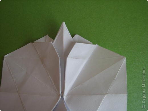 Мастер-класс Оригами Орхидея МК Бумага фото 31