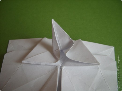 Мастер-класс Оригами Орхидея МК Бумага фото 61
