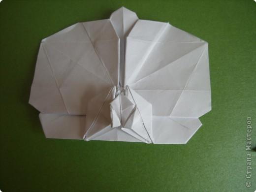 Мастер-класс Оригами Орхидея МК Бумага фото 76