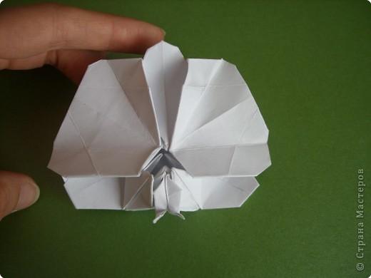 Мастер-класс Оригами Орхидея МК Бумага фото 79