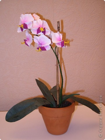 Мастер-класс Оригами Орхидея МК Бумага фото 1