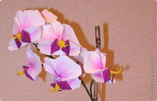 Мастер-класс Оригами Орхидея МК Бумага фото 80