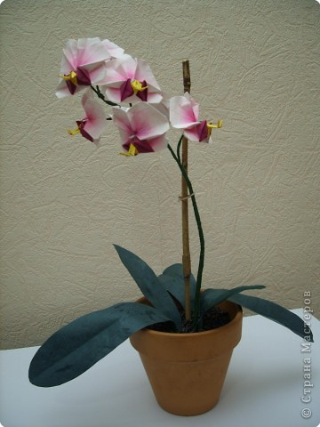 Мастер-класс Оригами Орхидея МК Бумага фото 82