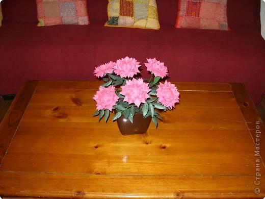 В последнее время заболела бумажными цветами. Вот такие пионы получились, легко делаются. фото 49
