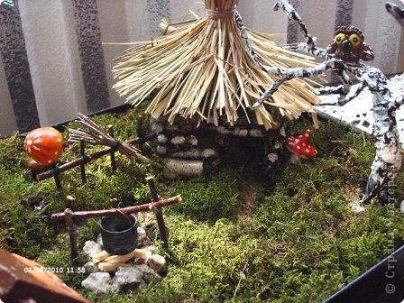 Домик в лесу фото 1
