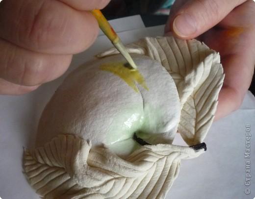 Мастер-класс Лепка МК роспись яблока Тесто соленое фото 5