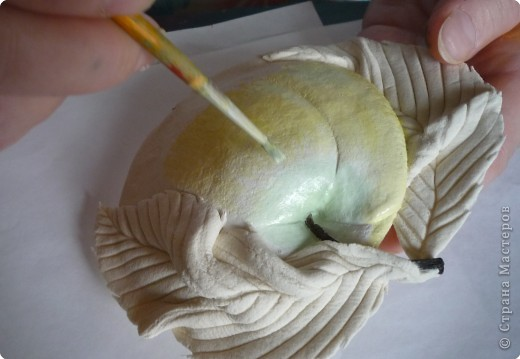 Мастер-класс Лепка МК роспись яблока Тесто соленое фото 6