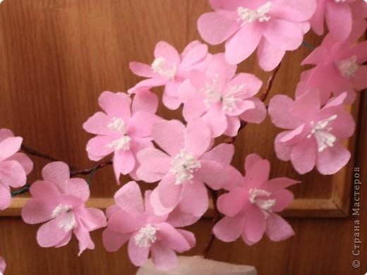Веточка сакура из гофрированной бумаги фото 3