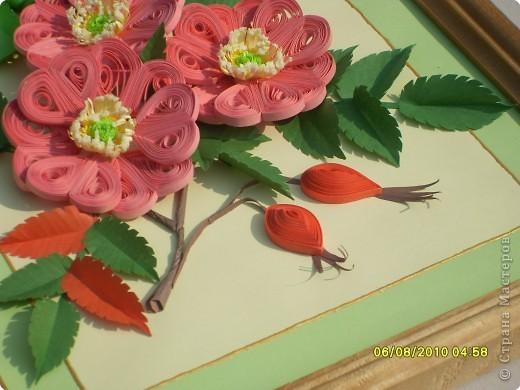 Загадка. Зелены кусточки,  Алые цветочки; Когти – коготочки,  Стерегут цветочки.  Конечно же это шиповник. Представляю очередную свою работу. Особенно понравилось делать листики, кажется получилось похоже. Веточка шиповника выполнена в натуральную величину. фото 4