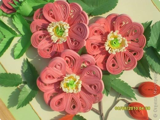Загадка. Зелены кусточки,  Алые цветочки; Когти – коготочки,  Стерегут цветочки.  Конечно же это шиповник. Представляю очередную свою работу. Особенно понравилось делать листики, кажется получилось похоже. Веточка шиповника выполнена в натуральную величину. фото 3