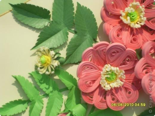 Загадка. Зелены кусточки,  Алые цветочки; Когти – коготочки,  Стерегут цветочки.  Конечно же это шиповник. Представляю очередную свою работу. Особенно понравилось делать листики, кажется получилось похоже. Веточка шиповника выполнена в натуральную величину. фото 7