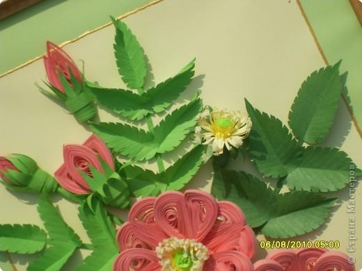Загадка. Зелены кусточки,  Алые цветочки; Когти – коготочки,  Стерегут цветочки.  Конечно же это шиповник. Представляю очередную свою работу. Особенно понравилось делать листики, кажется получилось похоже. Веточка шиповника выполнена в натуральную величину. фото 8