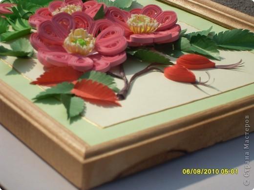 Загадка. Зелены кусточки,  Алые цветочки; Когти – коготочки,  Стерегут цветочки.  Конечно же это шиповник. Представляю очередную свою работу. Особенно понравилось делать листики, кажется получилось похоже. Веточка шиповника выполнена в натуральную величину. фото 5