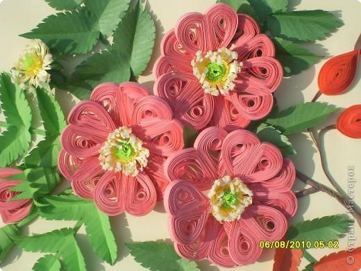 Загадка. Зелены кусточки,  Алые цветочки; Когти – коготочки,  Стерегут цветочки.  Конечно же это шиповник. Представляю очередную свою работу. Особенно понравилось делать листики, кажется получилось похоже. Веточка шиповника выполнена в натуральную величину. фото 2