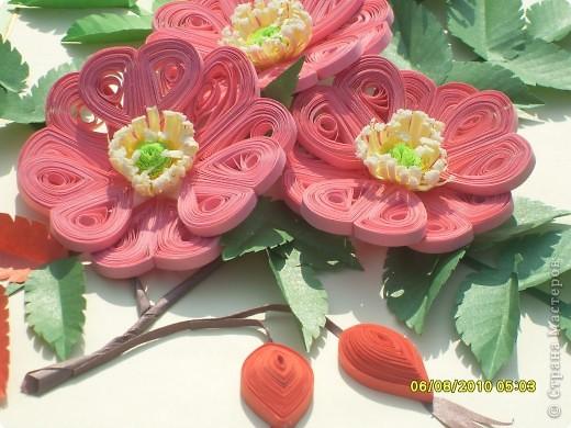 Загадка. Зелены кусточки,  Алые цветочки; Когти – коготочки,  Стерегут цветочки.  Конечно же это шиповник. Представляю очередную свою работу. Особенно понравилось делать листики, кажется получилось похоже. Веточка шиповника выполнена в натуральную величину. фото 6