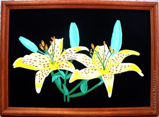 Рисование и живопись: Лилии