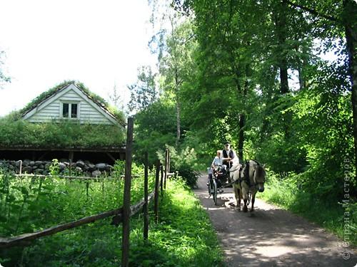 Добро пожаловать в Скандинавию! фото 9