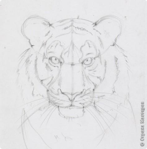 Готовый рисунок карандашом. фото 1