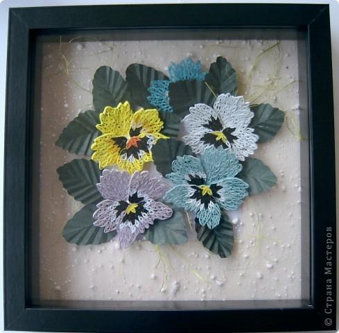 анютины глазки-мои любимые цветы фото 2