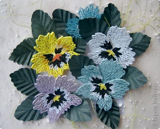 анютины глазки-мои любимые цветы фото 1