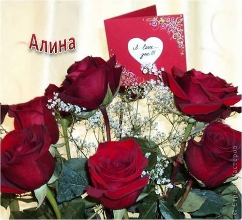 Фото цветы алине