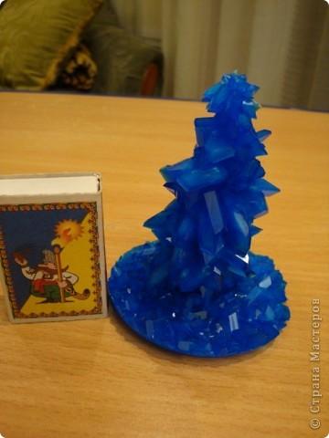 Поделка изделие Выращенные мною кристаллы Соль фото 4