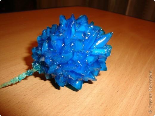 Поделка изделие Выращенные мною кристаллы Соль фото 7